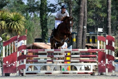 La saison des jeunes chevaux a débuté !